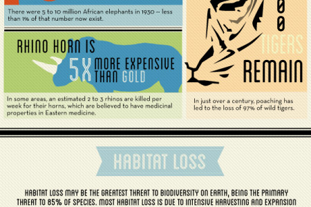 How We're Endangering Animals Infographic