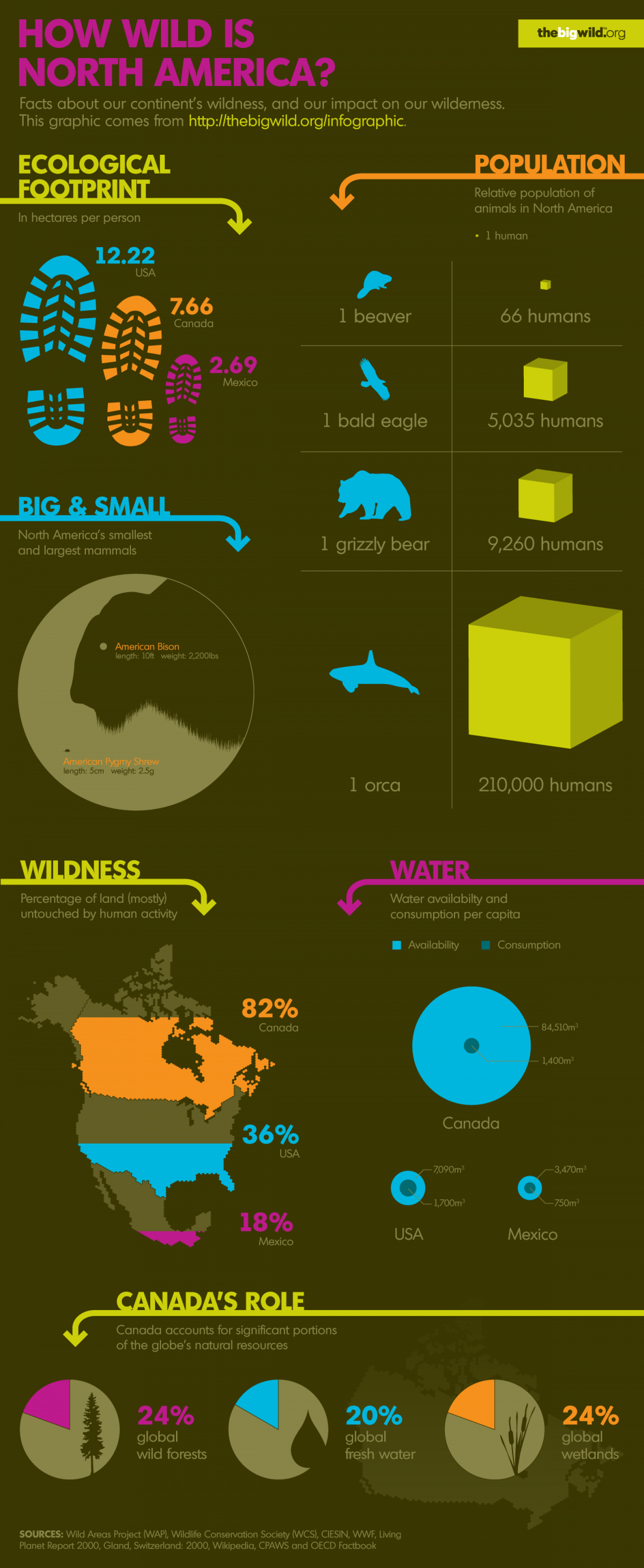 How Wild is North America  Infographic