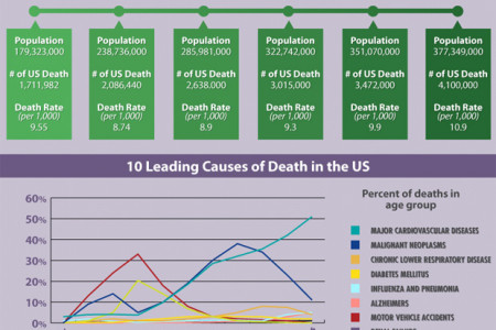 How Will You Die? The Causes of Death in The US Infographic
