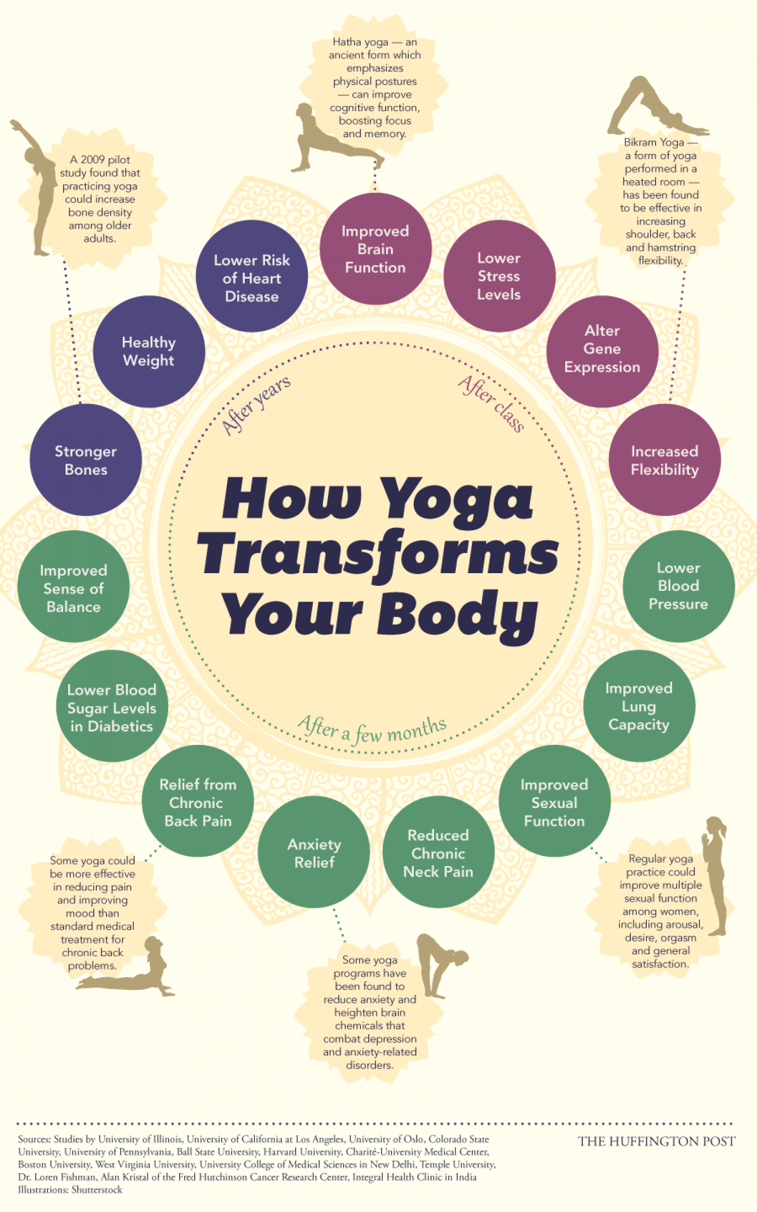 How Yoga Transforms Your Body Infographic