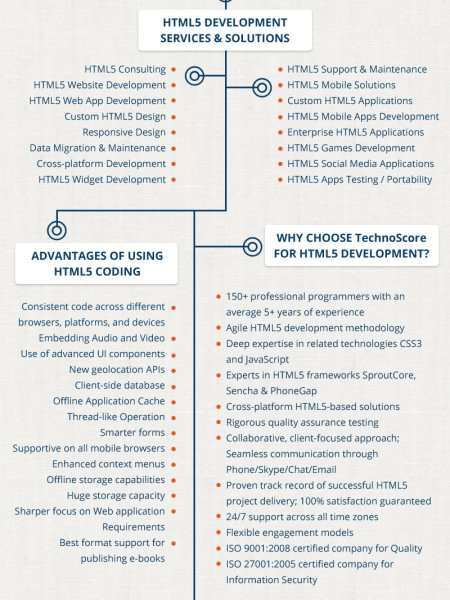 HTML5 Application Development Services Infographic