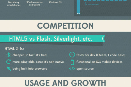 HTML5: Why Developers Need It! Infographic