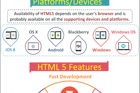 HTML5: Why Developers Need It Infographic