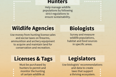 Hunters are a Vital Part of Conservation Infographic