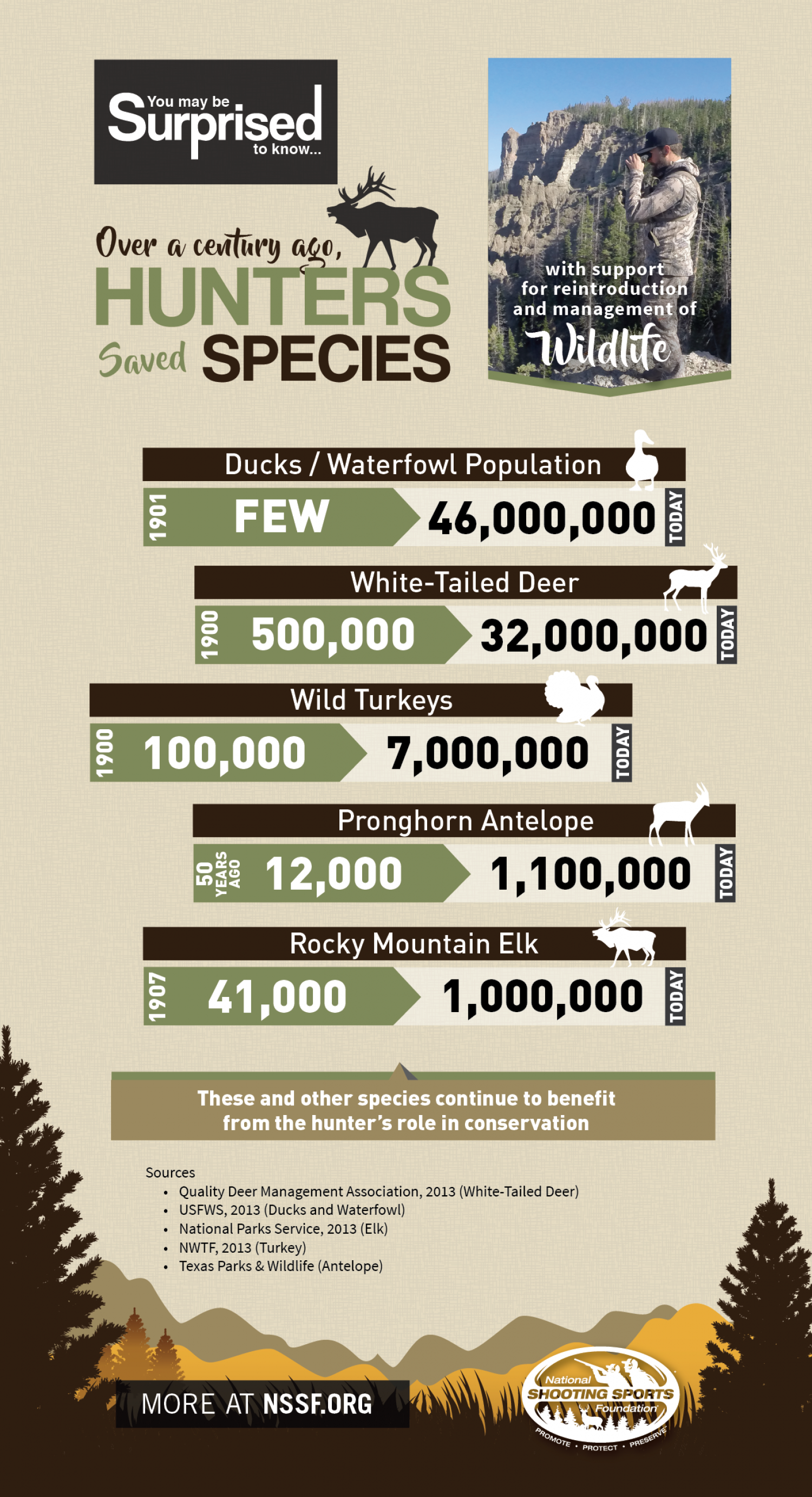 Hunters Saved Species Infographic