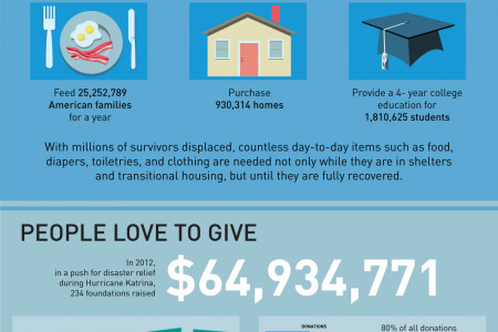 Hurting from Hurricanes - Disaster Recovery Infographic Infographic