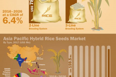 Hybrid Rice Seeds Market Witness Perspective CAGR of 6.4% between 2017-2026 Infographic