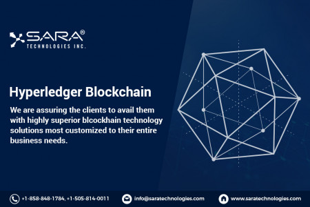 Hyperledger Development Company | Services -Sara Technologies Infographic