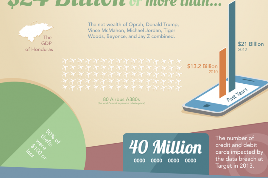 Identity Theft in America Infographic