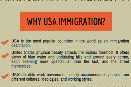 Immigration Consultancy For USA Infographic