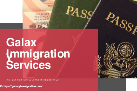 Immigration consultants in Hoshairpur. Infographic