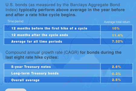 Impact of Raising Interest Rates On Stock Performance Infographic
