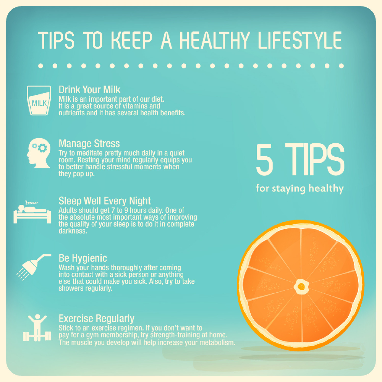 Importance of having a Healthy Lifestyle Infographic