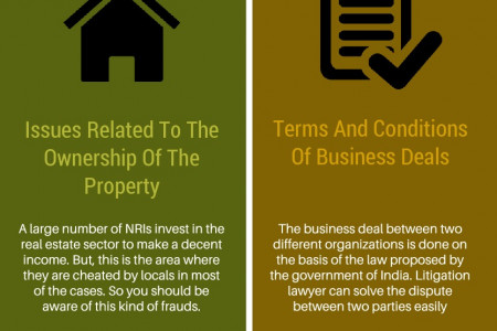 Importance of litigation lawyers for NRIs Infographic