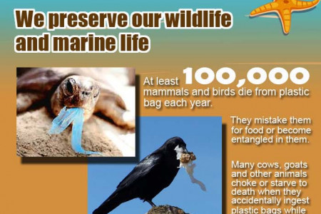 Importance of Reusable Bags Infographic