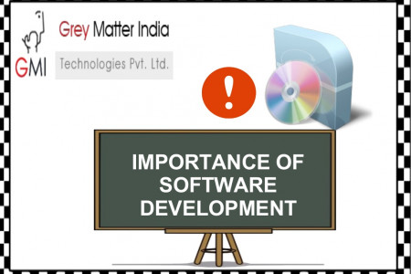 Importance Of Software Development Infographic