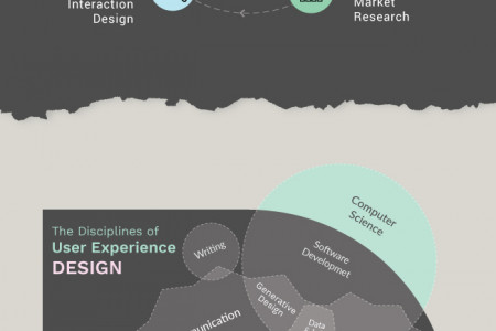 Importance of Website User Experience Infographic