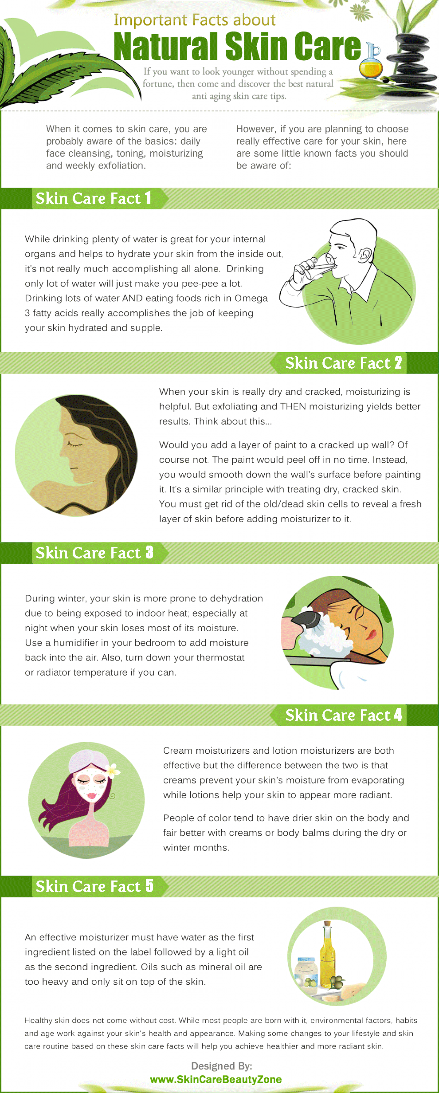 Important Facts About Natural Skin Care Infographic