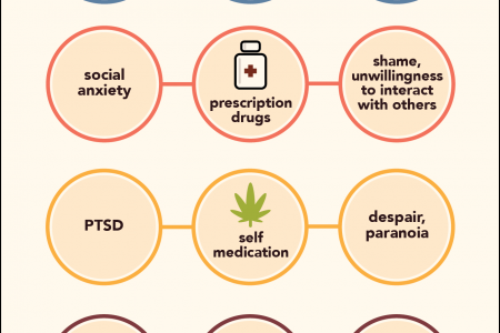 In Addiction, Mental Illness is Both a Cause and Effect Infographic
