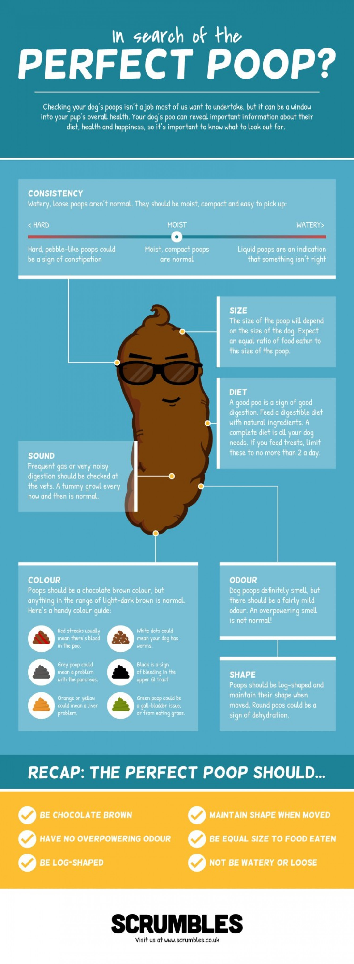 In Search of the Perfect Poop?  Infographic