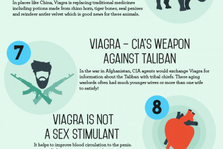 Incredible viagra facts Infographic
