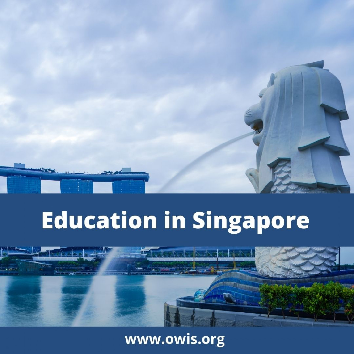 Independent Schools in Singapore - Offering National Certificate of Secondary Education (NCLD) and International Qualifications (IQA) Apps Infographic