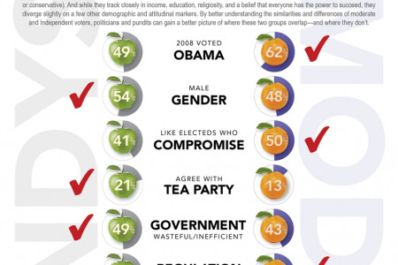 Independents vs. Moderates - What's the Difference? Infographic