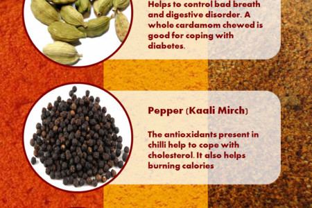 Indian Spices & Its Benefits Infographic