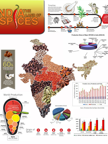 India: The Land of Spices Infographic