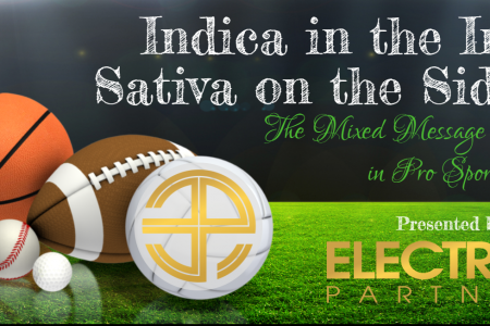 Indica in the Infield Sativa on the Sidelines  Infographic