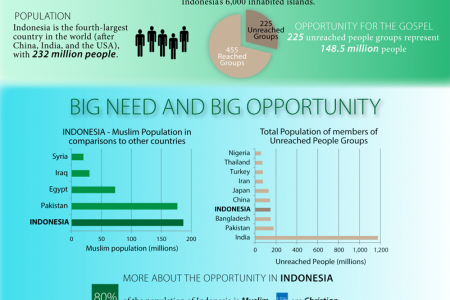 Indonesia: Think BIG! Infographic