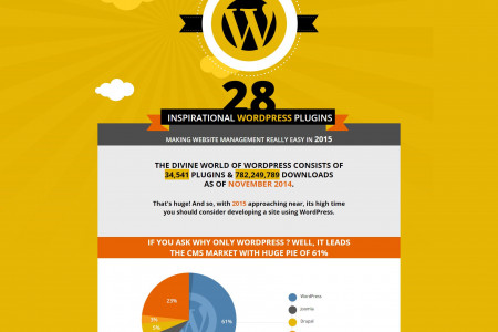 Infographic - 28 crucial WordPress Plugins for developers! Infographic