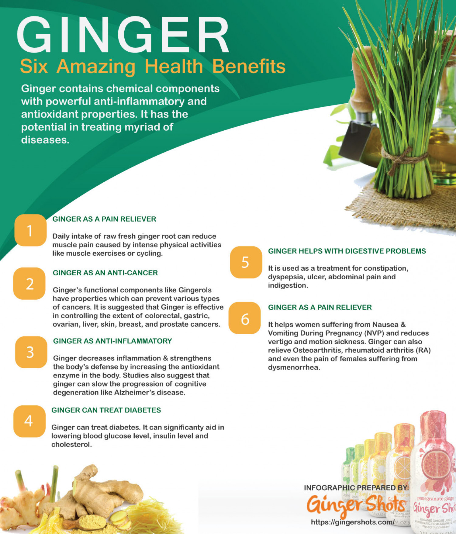 Infographic - Six Health and Medical Benefits of Ginger Infographic