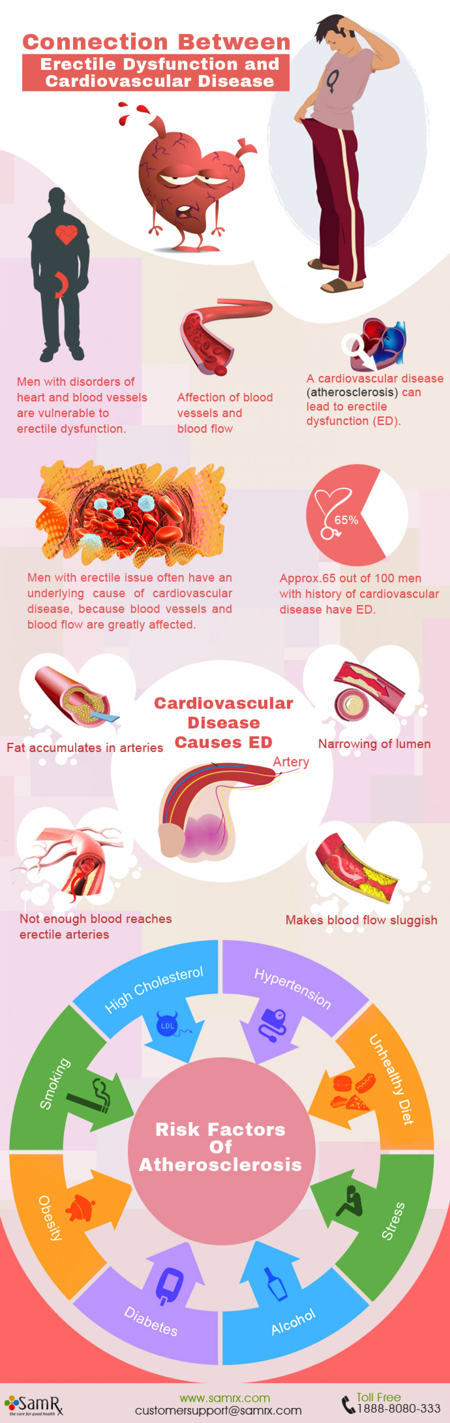 Infographic: Connection between Erectile Dysfunction and Cardiovascular Disease Infographic