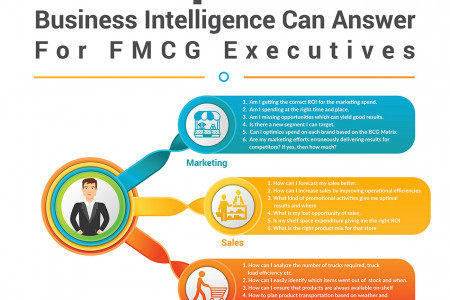 Infographic: Key Questions An AI-powered Business Intelligence Can Answer For FMCG Executives Infographic