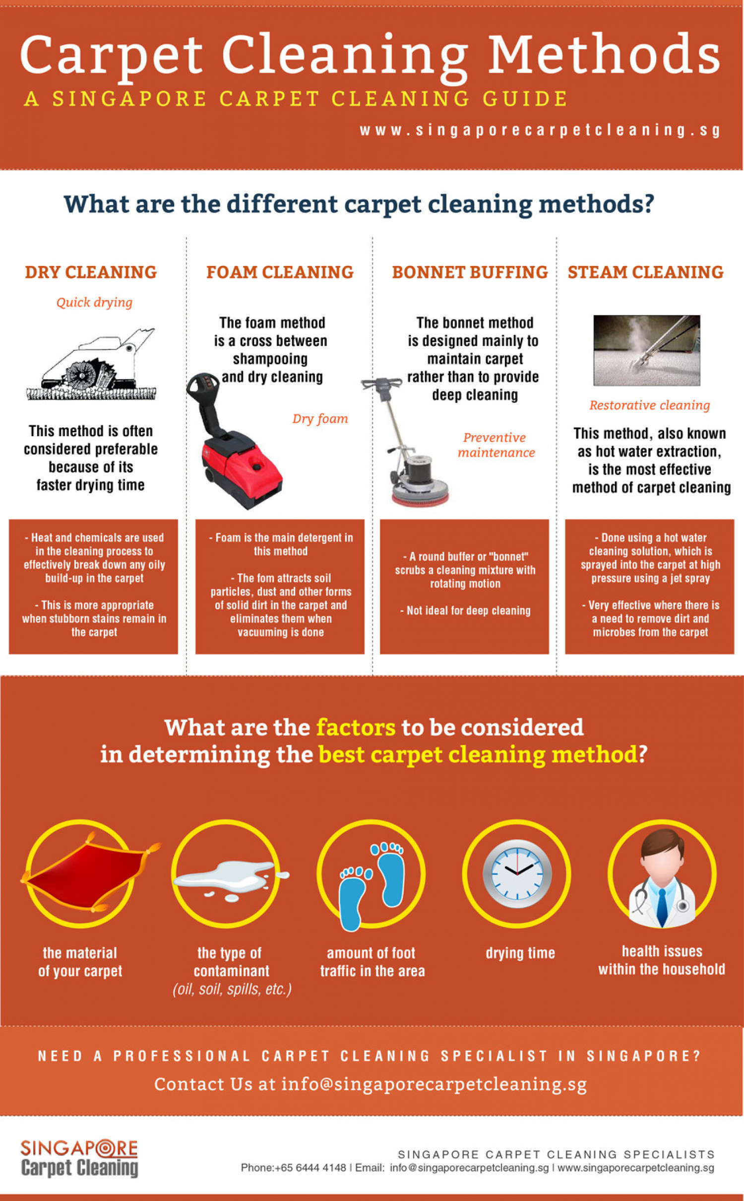 infographic-on-the-different-carpet-clea