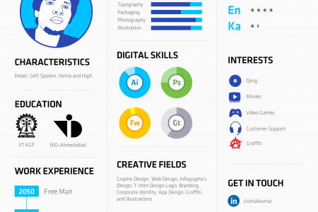 Infographic Resume Of Vishal Kumar Infographic