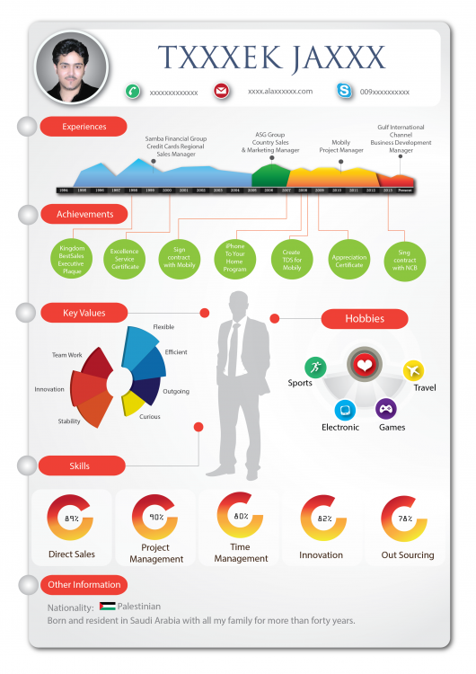 infographic resume visual ly