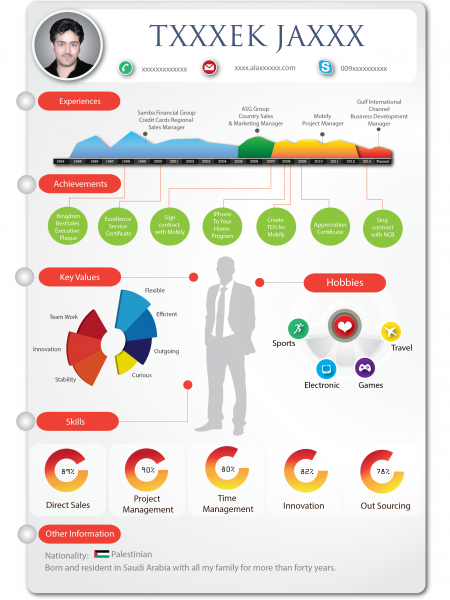Infographic Resume Infographic