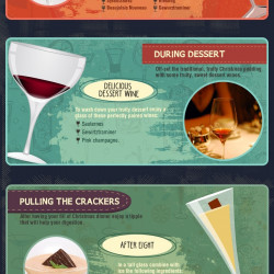 infographic the 12 drinks of christmas a holiday drinking guide visually - 12 Drinks Of Christmas