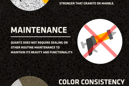 Infographics: What Makes A Quartz Countertop Special? Infographic