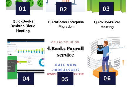 Information For QuickBooks Service Provider Infographic