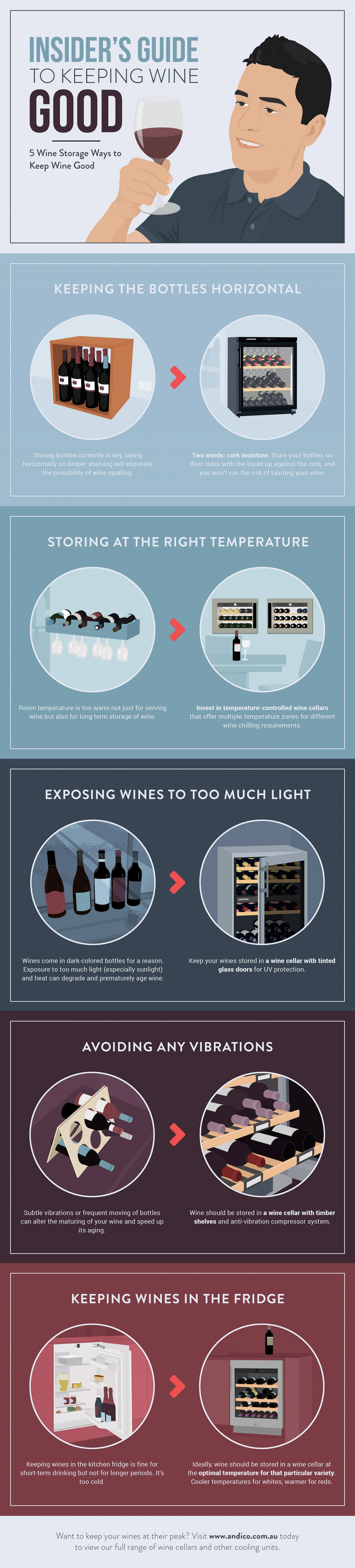 Insider's Guide to Keeping Wine Good Infographic