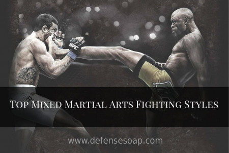 Inspiring MMA Fighting Styles  Infographic