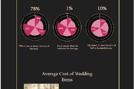 Interesting Africa Wedding Statistics Infographic