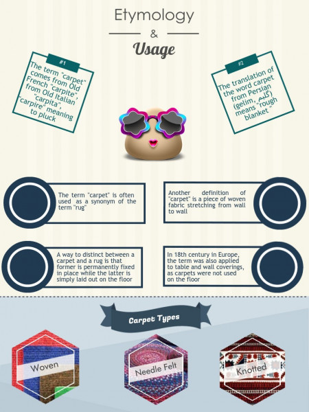 Interesting Facts About Carpets and Cleaning Infographic