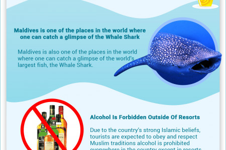 Interesting Facts about Maldives Infographic