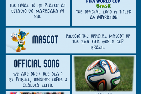 Interesting Facts of FIFA World Cup 2014 Brazil  Infographic