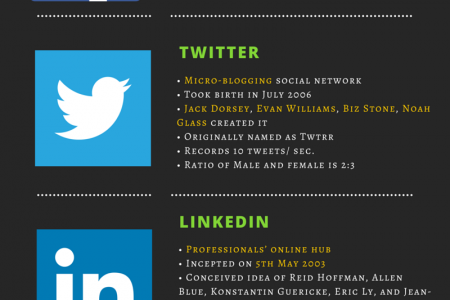 Interesting Facts of Top 5 Social Networking Sites Infographic