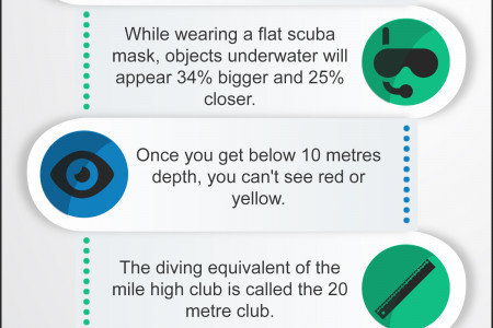 Interesting Scuba Diving Facts Infographic